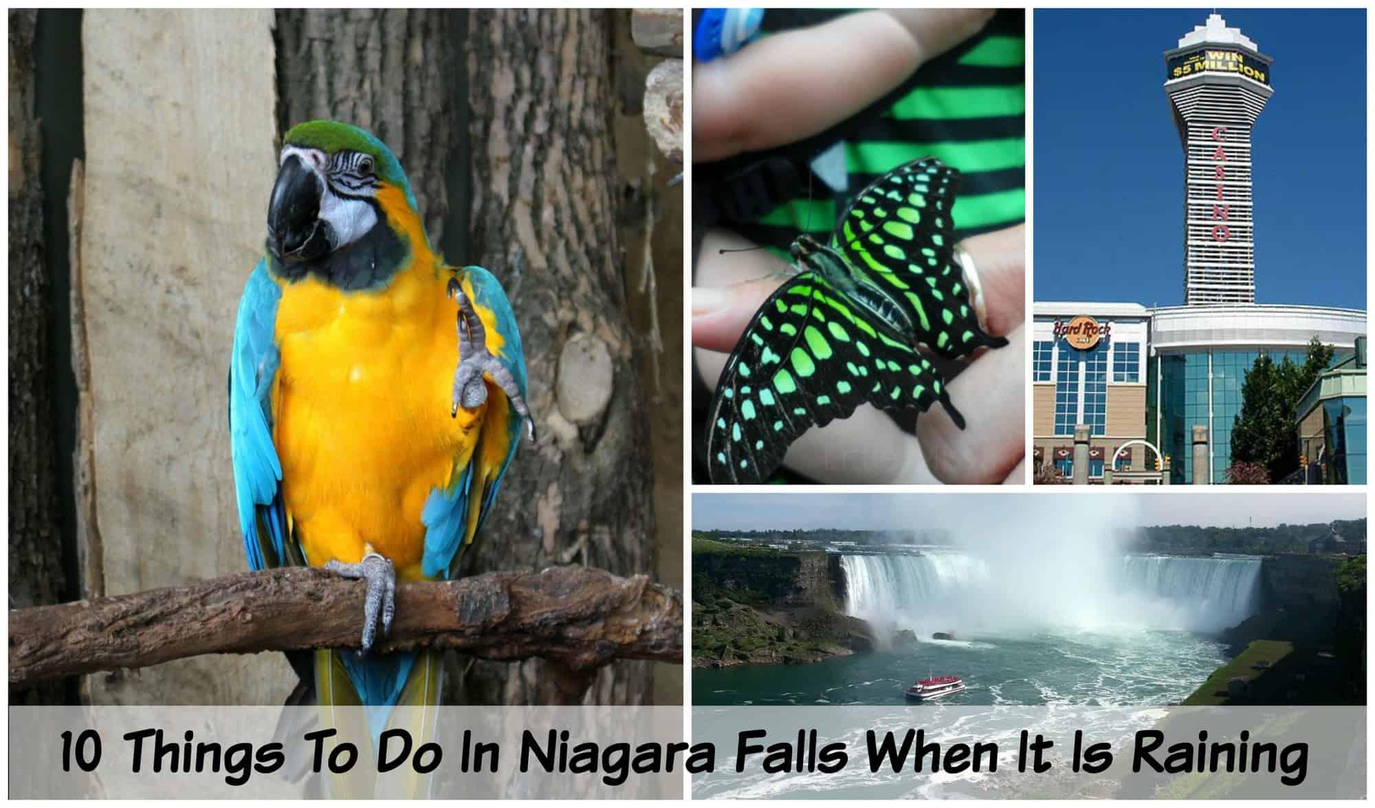 10 Things To Do In Niagara Falls When It Is Raining