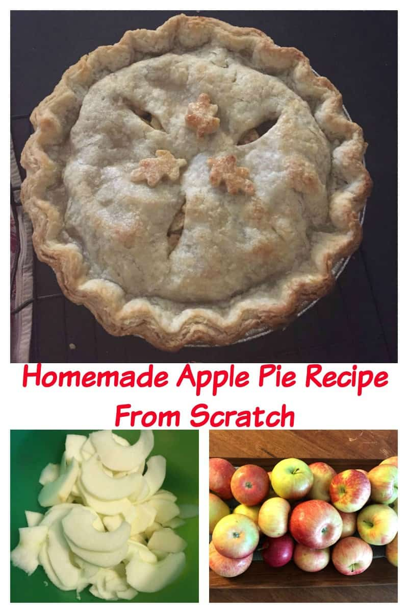 homemade-apple-pie-recipe-from-scratch-with-photos-20