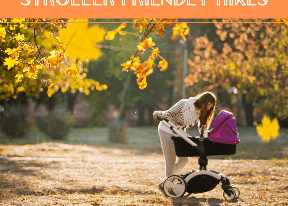 Hiking with a Baby – Stroller and Carrier Friendly Hikes in Brampton, Georgetown, and Milton