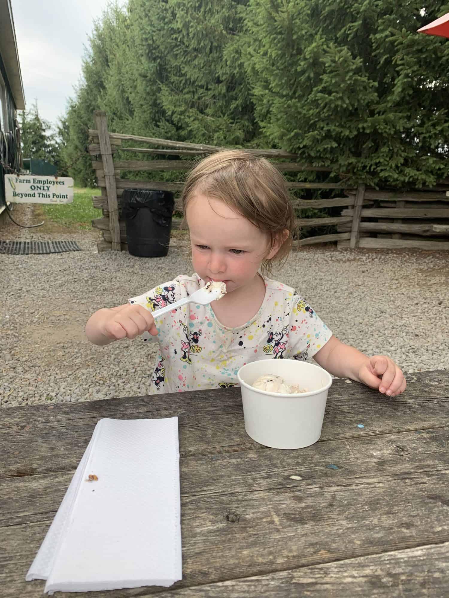 Ice Cream in Halton Hills