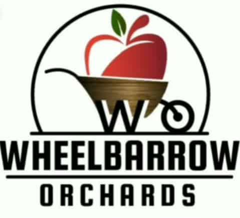 pick your own apples near mississauga wheelbarrow orchards