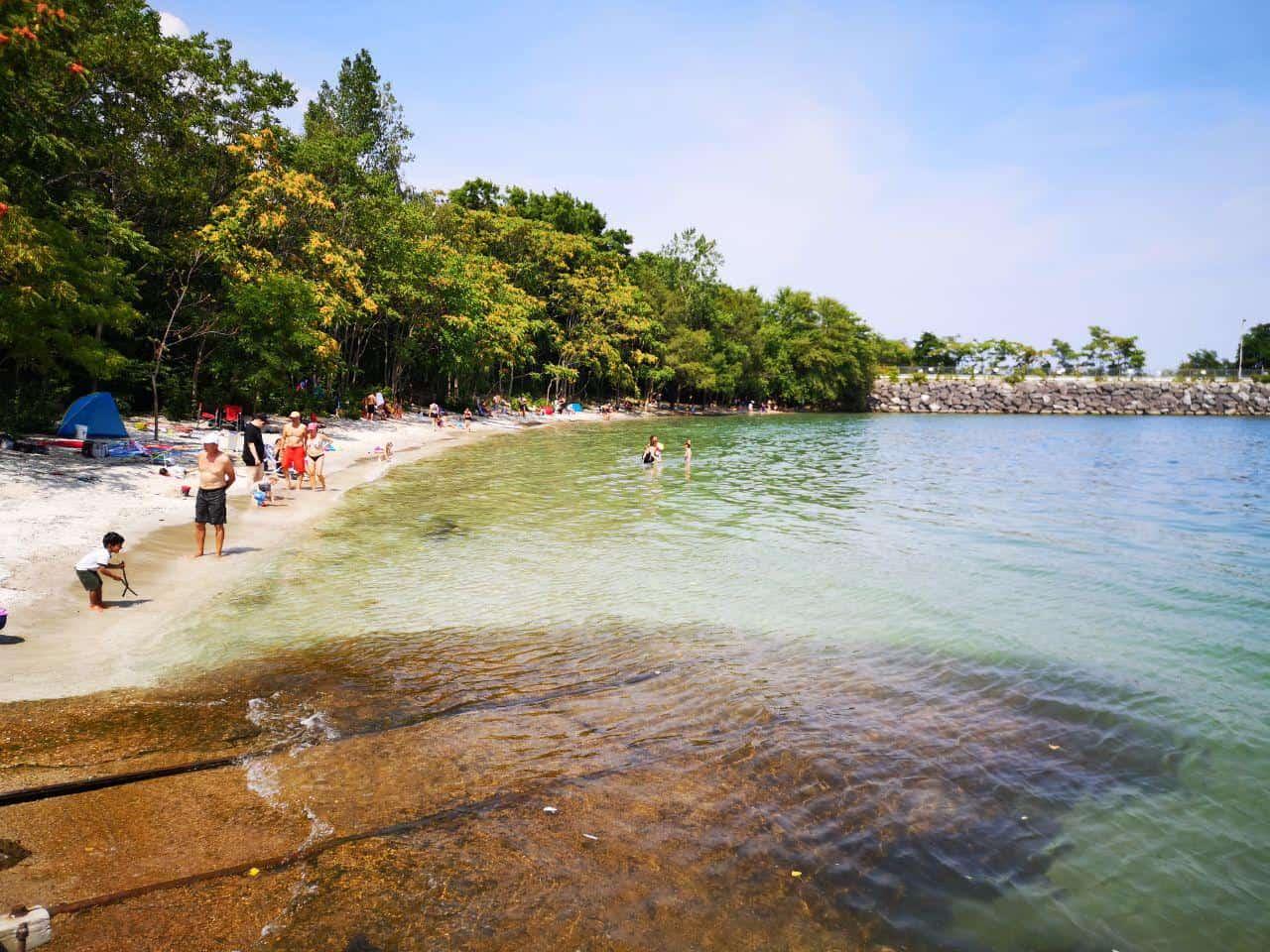 Best Beaches in Oakville