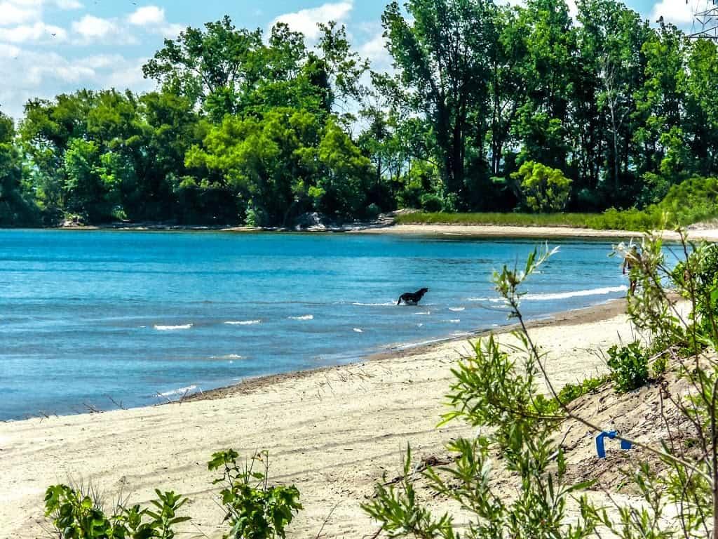 Best Beaches in Burlington