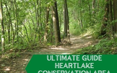 Find an Adventure Outdoors at Heart Lake Conservation Area- Updated 2021