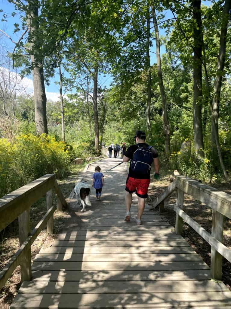 Rattray Marsh Trail