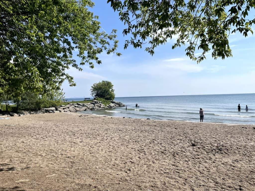 Jack Darling Park Beach