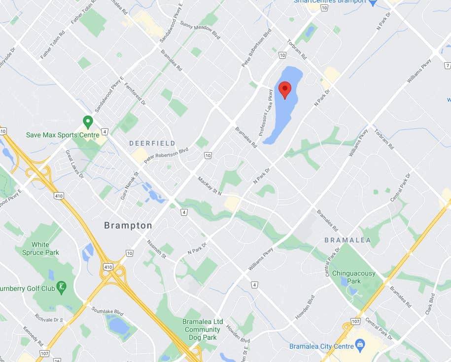 professors lake brampton address