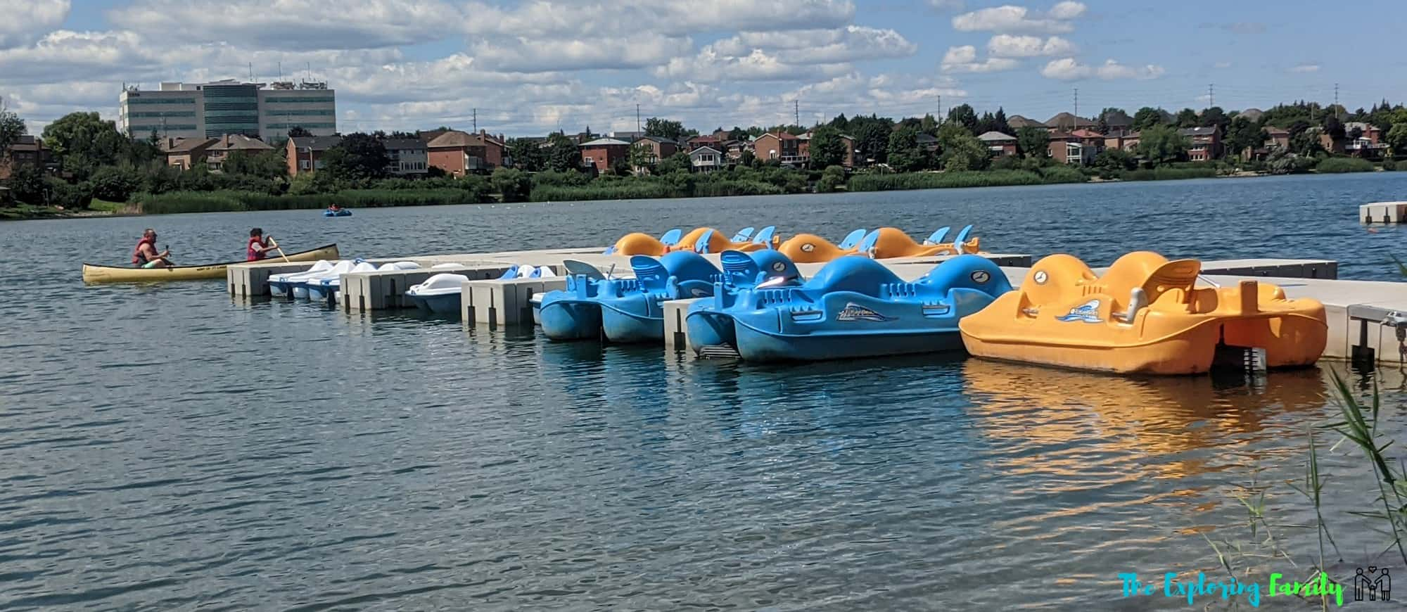 Professors Lake rentals paddle boats kayaks