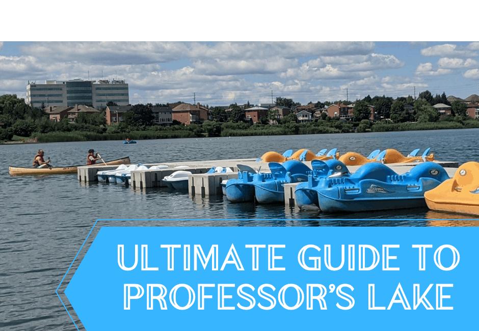 Ultimate Guide to Professor's Lake Brampton – Beach, Trails, Fishing, Rentals