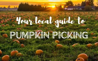 The Best Pumpkin Patches & Farms to Visit in the Fall near Mississauga, Brampton, and Halton for Pumpkin Picking