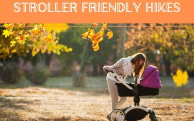 Hiking with a Baby – Stroller and Carrier Friendly Hikes in Brampton, Georgetown, Milton and Hamilton (updated 2021)